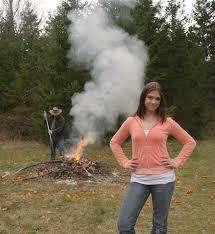 alternatives to burning washington state department of ecology
