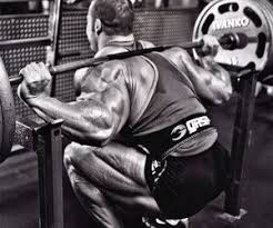 5x5 Bench Press Workout Should I Add Weights When Doing 5x5 Squats And Bench Press Or