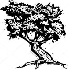 Oak Tree Drawing Woodcut Illustration Of Oak Tree U2014 Stock Vector Ronjoe 29890075
