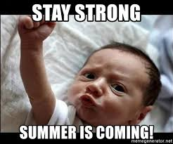 Summer Is Coming Meme - summer baby coming meme baby best of the funny meme