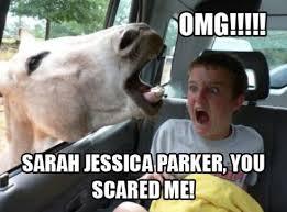 Parker Meme - sarah jessica parker meme