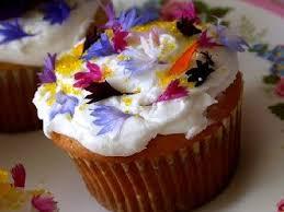 les fleurs comestibles en cuisine les fleurs comestibles présentation et utilisation