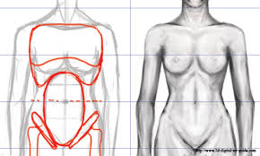 drawn women womens body pencil and in color drawn women womens body