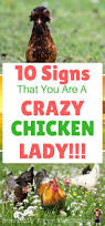 Best Backyard Chicken by Types Of Chickens For Backyards Backyard Decorations By Bodog