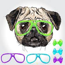 4 247 pug stock vector illustration and royalty free pug clipart