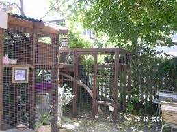 Keep Cats In Backyard Enclosures For Cats Community Concern For Cats