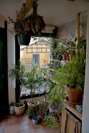 urban gardening how to garden in your small space relocation com