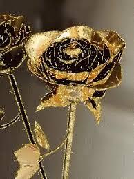 golden roses golden gif golden discover gifs