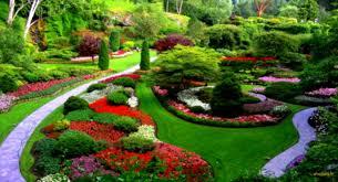 flower landscape design charming design best front yard