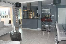 cuisine de prestige salon cuisine americaine appartement de prestige dans