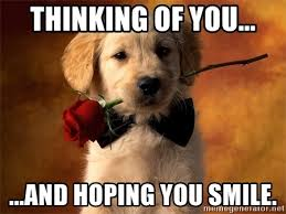 Thinking Of You Meme - thinking of you and hoping you smile cute dog with roses
