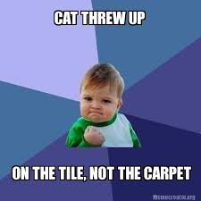 Puke Meme - almost make me happy about cleaning up cat puke a lot easier this