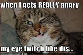 Twitch Memes - when i gets really angry my eye twitch like dis cheezburger