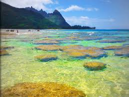 Hawaii Scenery images Scenic hawaii hawaii vacation destinations ideas and guides jpeg