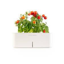 le click u0026 grow tomate cest notre coup de coeur click u0026 grow