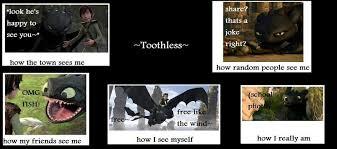Toothless Meme - toothless meme by demonlucy on deviantart