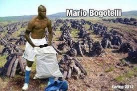 Bogs Meme - bog memes home facebook