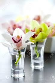 Small Vases Wholesale Small Crystal Vases Wholesale White With Flowers 28397 Gallery