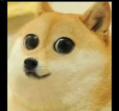 Doge Meme Tumblr - wow such woof snow doge meme v2 by snow fur affinity dot