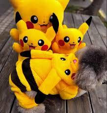 pikachu costume pikachu costume funnydogsupplies