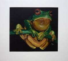 a frog drawing using colored pencil teddy lewis artwork
