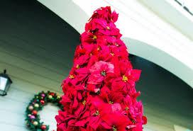 poinsettia tree ken wingard s diy poinsettia entry tree home family hallmark