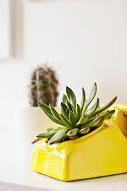 best 25 indoor plant pots ideas on pinterest white planters