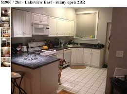 dog photobombs every picture in craigslist apartment listing