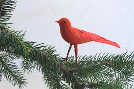 red bird christmas ornament in a christmas tree stock photo
