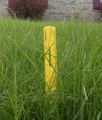 grass nuisances town of whiteland