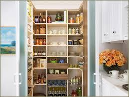 Narrow Kitchen Pantry Cabinet Standing Kitchen Pantry Larder Cupboard For Sale Corner Food