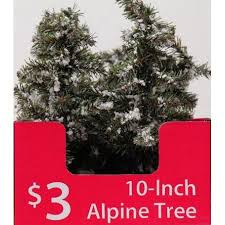 time 10 in snow alpine tree green time and products