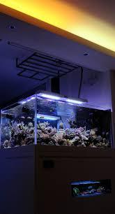 stunner led aquarium light strips 1185 best reef images on pinterest reef aquascaping aquarium