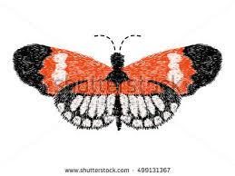 butterfly designs free vector stock graphics images