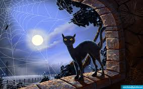 halloween wallpaper images halloween cat wallpaper wallpapers browse