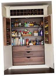 perfect home kitchen pantry designs ideas