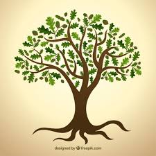 tree with green leaves vector premium