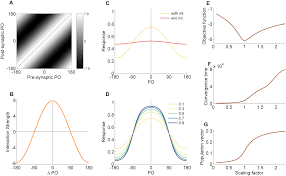 optimal information representation and criticality in an adaptive