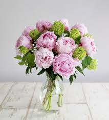 peonies delivery peony bouquet 10 pink peonies 3 viburnum opulus blossom
