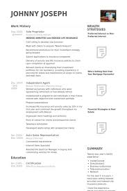 Sample Resume Business by Sole Proprietor Resume Samples Visualcv Resume Samples Database