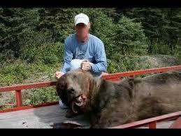 boxer dog kills man dog kills the bear youtube