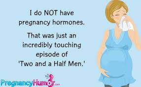 Pregnancy Hormones Meme - lighthearted cards about being pregnant funny pregnancy ecards