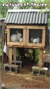 Rabbit Hutch Makers Rabbit House Living U0026 Sleeping