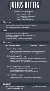 Blizzard Resume Resume