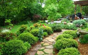 100 garden plant ideas decorating buxus ball topiaries for