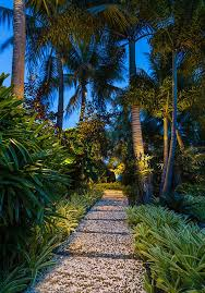 best 25 tropical landscape lighting ideas on pinterest