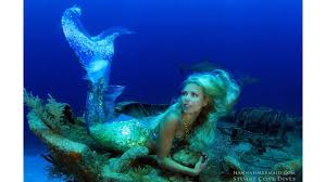 hannah fraser a real life mermaid swims with sharks and whales