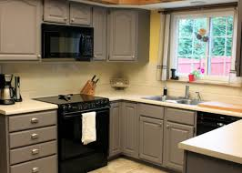satiating kitchen cabinet doors at home depot tags cabinet home