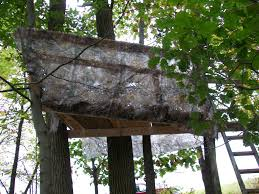 climbing stands for those afraid of heights huntingnet forums