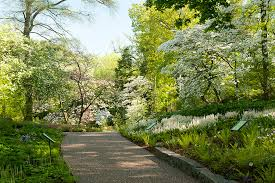 Ny Botanical Garden Membership Thirteen Member Day At The New York Botanical Garden Thirteen